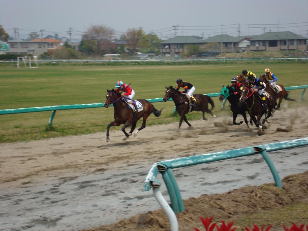 相馬野馬追振興秋季競馬大会
