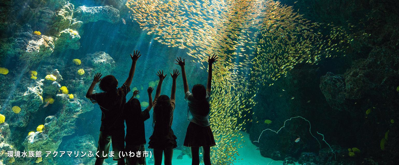 環境水族館アクアマリンふくしま(いわき市)