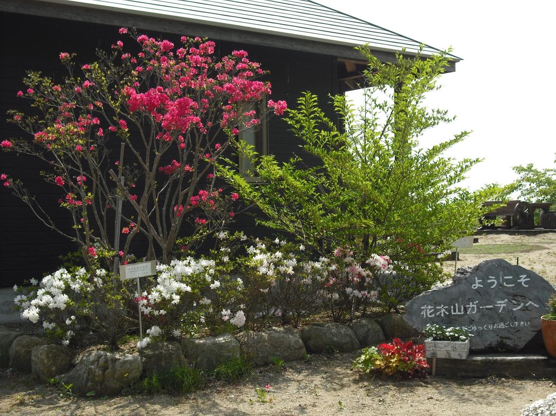 海の見えるガーデン花木山